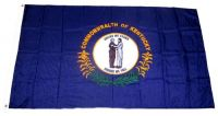 Fahne / Flagge USA - Kentucky 90 x 150 cm