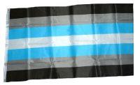 Fahne / Flagge Demiboy Pride 90 x 150 cm