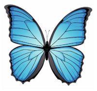 Aufkleber Sticker Schmetterling hellblau