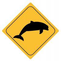 Aufkleber Sticker Achtung Delfin Delphin Autoaufkleber