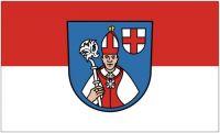 Fahne / Flagge Reichenau 90 x 150 cm
