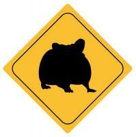 Aufkleber Sticker Achtung Hamster Autoaufkleber
