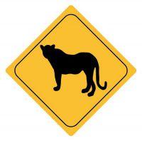 Aufkleber Sticker Achtung Leopard Autoaufkleber