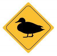 Aufkleber Sticker Achtung Ente Autoaufkleber