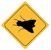Aufkleber Sticker Achtung Fliege Autoaufkleber