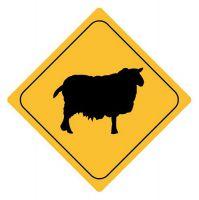Aufkleber Sticker Achtung Schaf Autoaufkleber