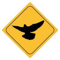 Aufkleber Sticker Achtung Taube Autoaufkleber