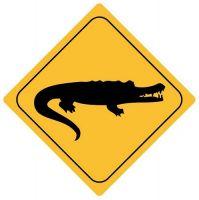 Autoaufkleber Sticker Achtung Krokodil Alligator NEU Aufkleber