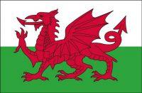 Fahnen Aufkleber Sticker Wales
