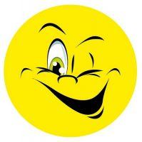 Aufkleber Sticker Smile zwinkernd