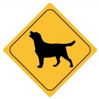 Autoaufkleber Sticker Achtung Hund NEU Aufkleber